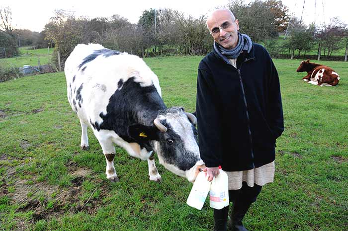 UK: humane dairy farming: Milk 'n Honey thumbnail